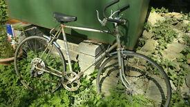 Elderly Falcon Racing Bike