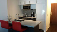 Luxury 1 Bed, 1 Washroom Condo Downtown - Available March first