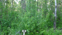 10% off!! Our best lesser slave lake lot (kinuso) rent to own.
