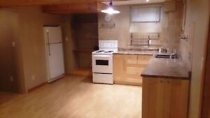Newly renovated one bedroom basement apartment (All inclusive)