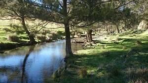 HUNTING  Property 4 SALE. 1340 acres with INCOME. 5 hours Sydney Halls Creek Tamworth Surrounds Preview