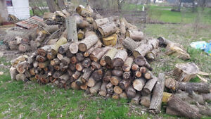 Camping  Fire Wood for Sale