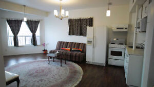 Newly Renovated, 2 Bedroom, Bright, Video