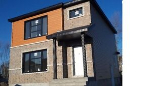 1 bedroom apt in single house close to Ottawa