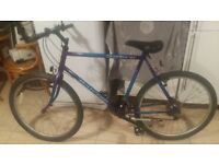 raleigh mens mountain bike 15 speed