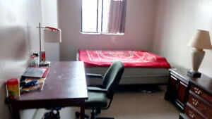 One spacious room for rent near Bus Terminal downtown