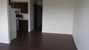 Newly Renovated 3 Bedroom Unit for Rent in SE Calgary