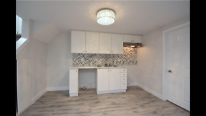 Bright Spacious 2 BR Apt in Newly Renovated Legal Duplex on MTN