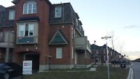 Beautiful 3 Bed 2 Bath Town in Milton April 1st Occupancy