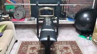 Selling weights along with a weight bench and bar