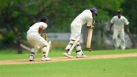 Play Cricket this summer with Toronto Jaguars Cricket Club