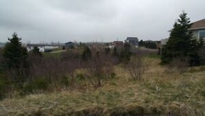 3 Large Lots in Torbay