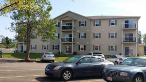 Quiet 2 Bedroom Unit with Washer/Dryer available August1st