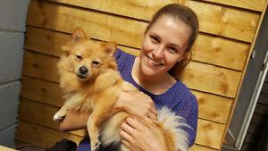 Isha's Edmonton & Area Pet Care! -- Dogs, Cats, You Name It!