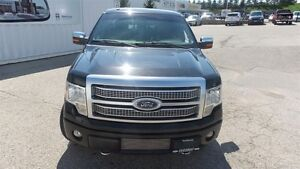 2012 Ford F-150 Platinum | Local Trade In, Loads of Options! Kitchener / Waterloo Kitchener Area image 8
