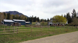 Turtle Valley, BC – 3 Bdrm Home on 50 Acres - $649,000