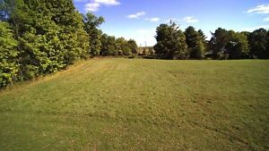 18 Acres in Rideau Lakes Near Westport Kingston Kingston Area image 5