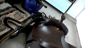 new horse saddle with all accessories 1100 or best offer