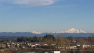 Modern 1 Bed PENTHOUSE condo with Mount Baker views (Fleetwood)