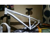 Specialized P1 jump trick bike bicycle rockshox pike excellent condition frame forks and other parts