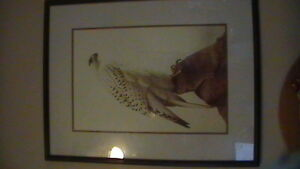 Icelandic Gyr Falcon Print Kitchener / Waterloo Kitchener Area image 2