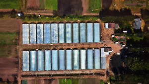 Farm for lease in Richmond BC
