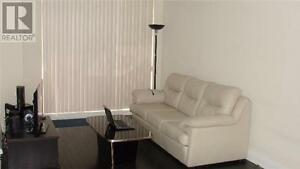 1+1Beds, 2Baths, 520 STEELES AVE W, New Luxury-Boutique Condo