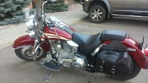 MINT CONDITION SOFTAIL WITH ONLY 8800KM