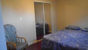 basement suite available August 1st