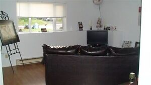 1 Bedroom and den close to hospital and UofM