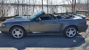 Super Ford Mustang 2003 Seulement 113 000 KM  Aucune Rouille
