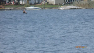 Kayak lessons -   open daily