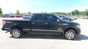 2012 Ford F-150 Platinum | Local Trade In, Loads of Options! Kitchener / Waterloo Kitchener Area image 6