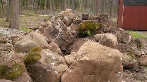 Landscape Boulders/Rocks Moss Covered