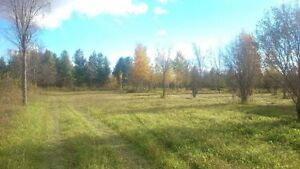 16 acres for Home or Hobby Farm - No HST - Financing Available!