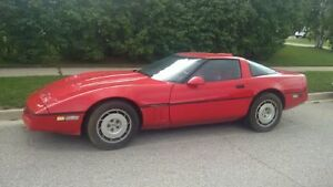 Beauty corvette needs new home