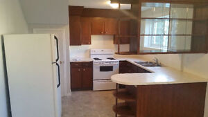 Renovated1100 Sq Ft Basement Suite for Rent