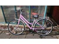 Ladies Bicycle For Free
