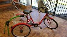 Gomier Tricycle Morayfield Caboolture Area Preview