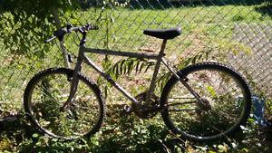 Grey Nakamura Mountain Bike - Medium