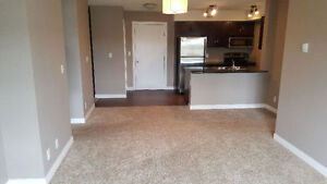 Room for rent south side condo