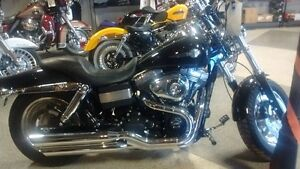 BEAUTY IN BLACK THIS DYNA FAT BOB IS READY ROLL
