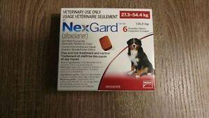 Nexgard Red Xlg Dog 6 Chew Pack