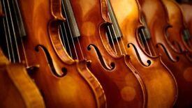 Violin Lessons - Experience Violin Teacher