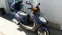 2009 scooter scooter