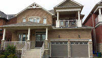 1 Bedroom and Den Basement Apartment for Rent in Richmond Hill