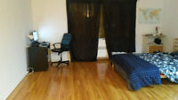 Amazing 1 1/2 Apartment Downtown