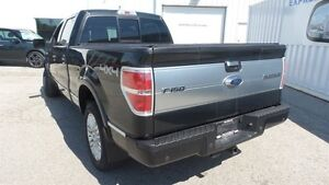 2012 Ford F-150 Platinum | Local Trade In, Loads of Options! Kitchener / Waterloo Kitchener Area image 3