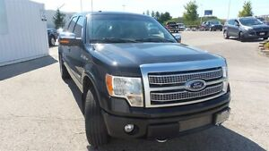 2012 Ford F-150 Platinum | Local Trade In, Loads of Options! Kitchener / Waterloo Kitchener Area image 7