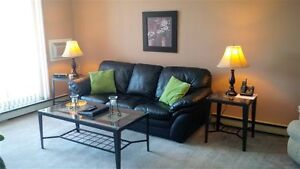 Special Summer Deal - Fully Furnished suite.